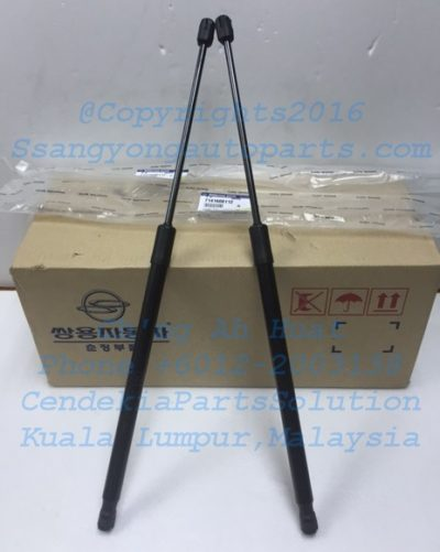 7141608112 Lifter TailGate